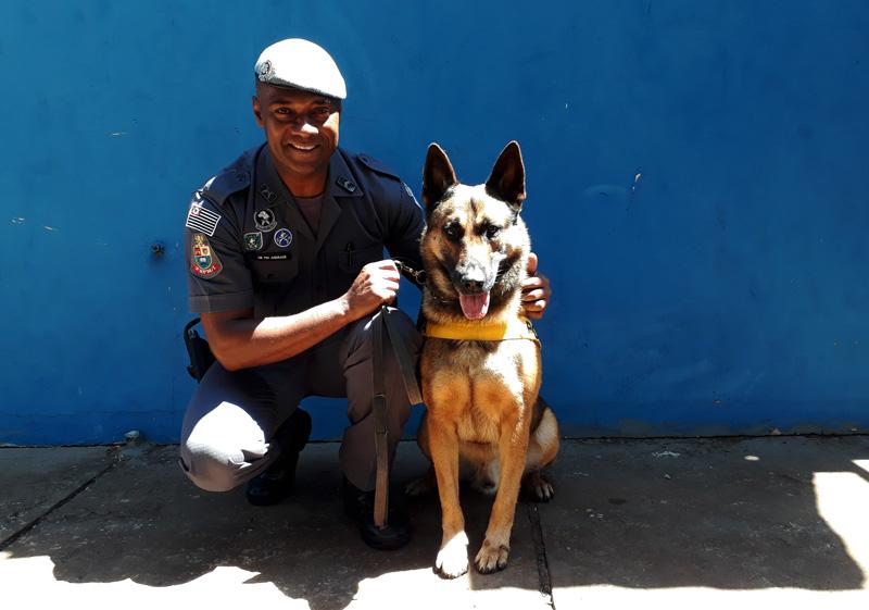Canil da PM Ribeirão Preto - História do Dia