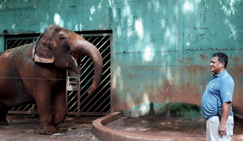 Zoo Fábio Barreto Ribeirão Preto História do Dia